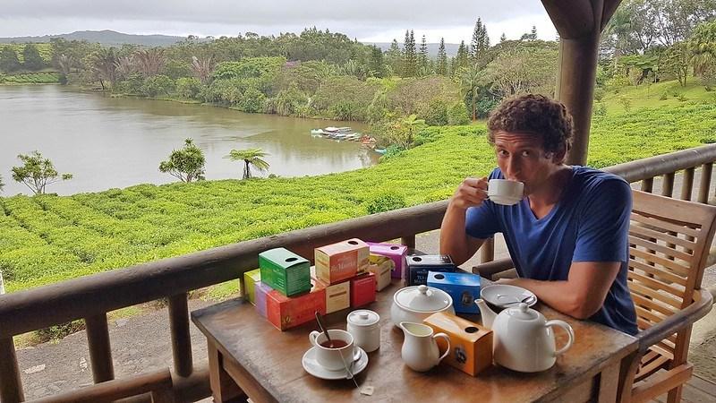 Bois de Cheri مصنع الشاي في جزيرة موريشيوس