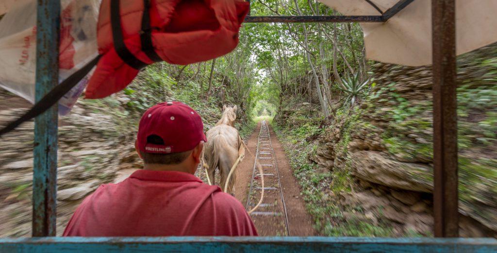 الخيول والقطارات في المكسيك