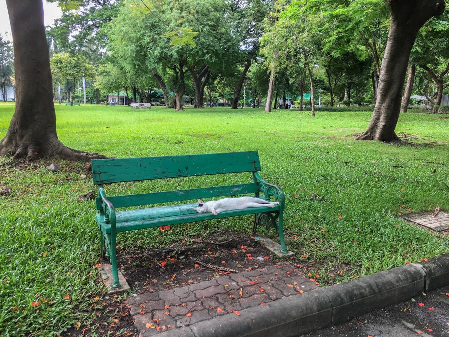 أماكن الإقامة في بانكوك