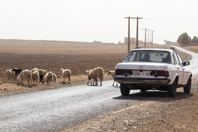 السفر في مراكش