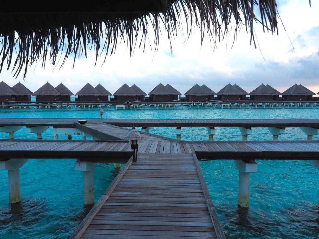 تاج ايكزوتيكا في المالديف